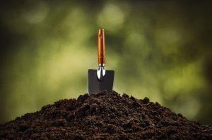 вирощування розсади: підготовка грунту