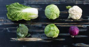 особливості вирощування розсади капусти залежать від сорту