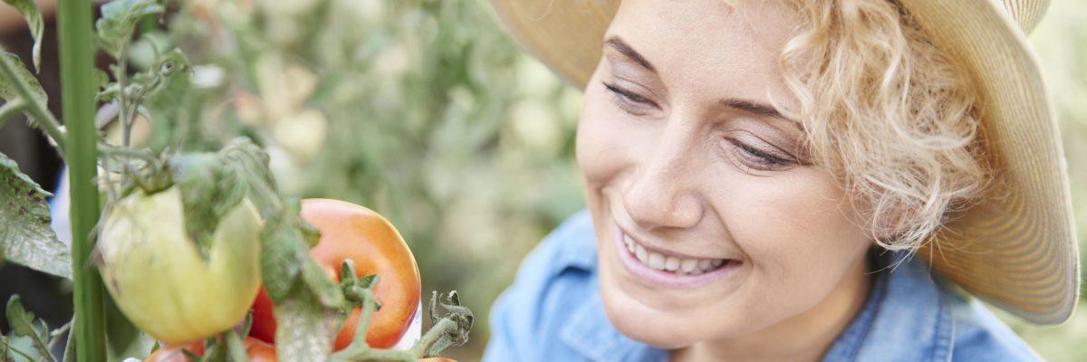 Эксперты помогают садоводам