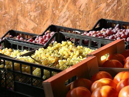 Зберігання фруктів: правила і секрети садівників