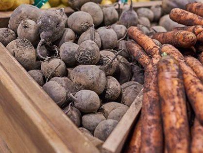 Зберігання коренеплодів: секрети овочів-довгожителів